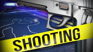 Deadly shooting near Nellis and Owens