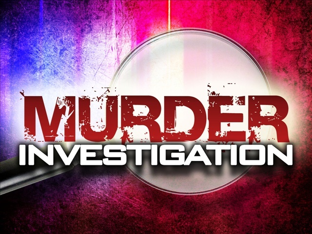 Detectives investigating homicide