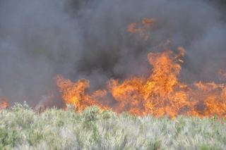 Governor looks at Nevada wildfires pattern