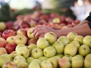 EPA fines 1 Nevada nursery over pesticides