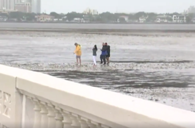 Storm Surge Swallows Jacksonville With Record Floods