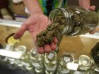 Mayors of 6 cities where pot is legal form group