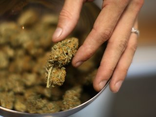 Wells now plans a medical marijuana dispensary