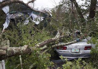 Hurricane Michael: How to give and avoid a scam